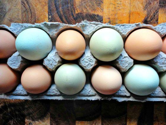 BeFunky_eggs.jpg